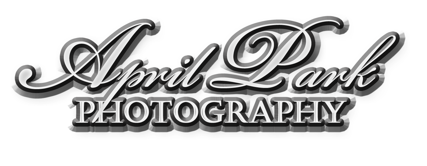 April Park | Rogers Arkansas Photographer